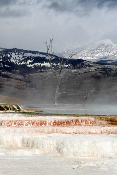 Photograph - Mammoth Hot Springs In Yellowstone National Park by Pierre Leclerc Photography
