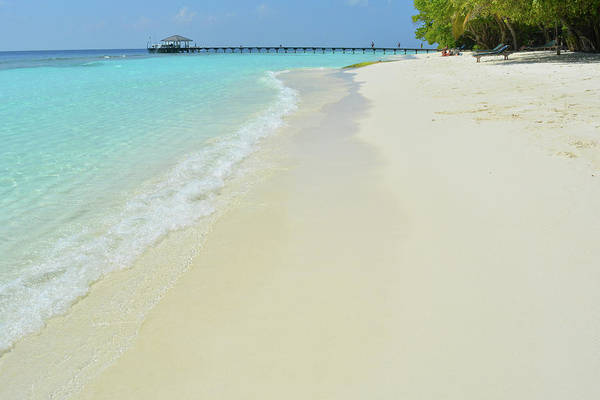 Photograph - 29 December 2017 Royal Island, Maldives. Sunny Day On The Beach In Maldives by Oana Unciuleanu