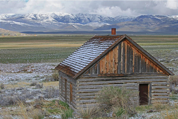Photograph - 2d07514 Fresh Snow On Abandoned Cabin by Ed Cooper Photography