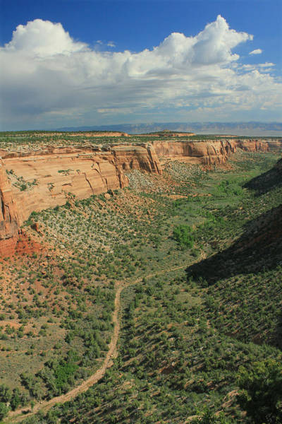 Photograph - 2d10378 Ute Canyon 2 by Ed Cooper Photography
