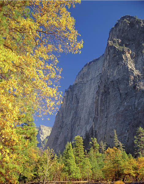 Photograph - 2m6702 Cathedral Rocks In Autumn by Ed Cooper Photography