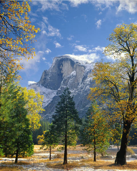 Photograph - 2m6713 Half Dome In Autumn Snow by Ed  Cooper Photography