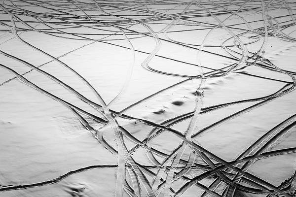 Photograph - Movement In Snow by John Williams