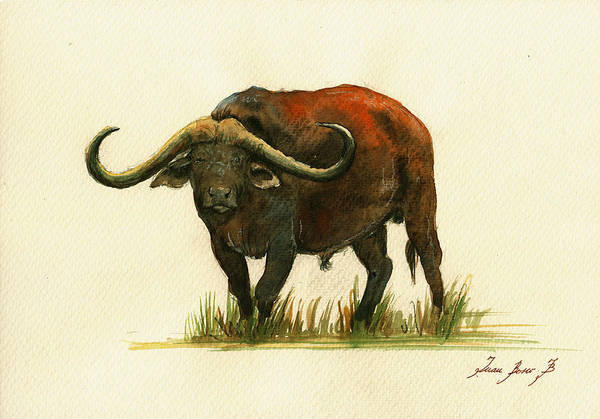 Wall Art - Painting - African Buffalo Watercolor Painting by Juan  Bosco