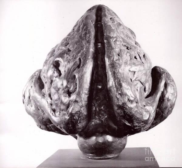 Sculpture - Ape Mother  by Robert F Battles