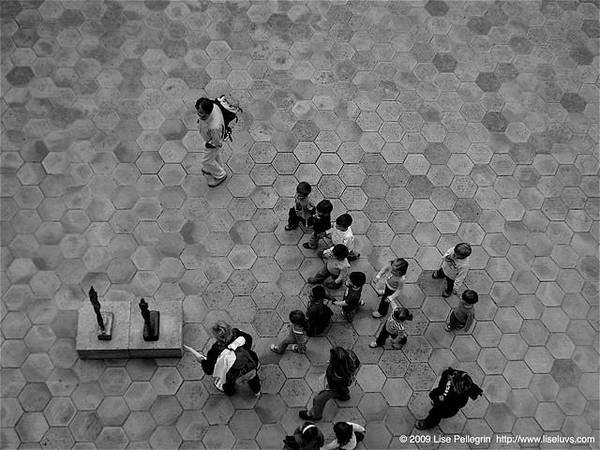 Wall Art - Photograph - Art Group by Lise Pellegrin