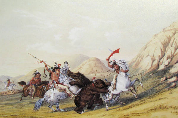 Painting - Attacking The Grizzly Bear by George Catlin