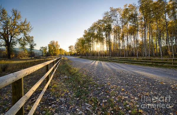Wall Art - Photograph - Autumn Road by Idaho Scenic Images Linda Lantzy