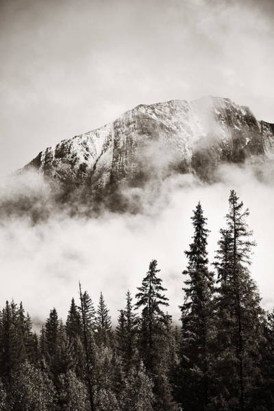 Photograph - Banff National Park by Songquan Deng