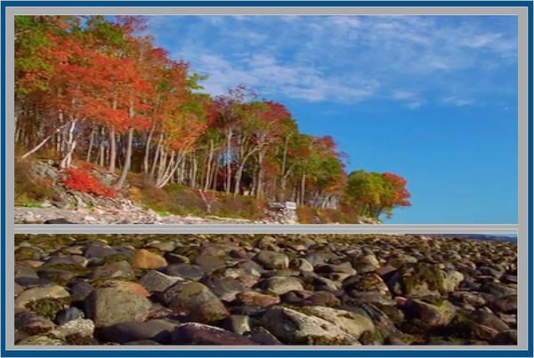 Promotion Mixed Media - Beautiful Fall Season Nature Renews Itself  Theme Green Trees Mountain N Sky View   Save The Environ by Navin Joshi