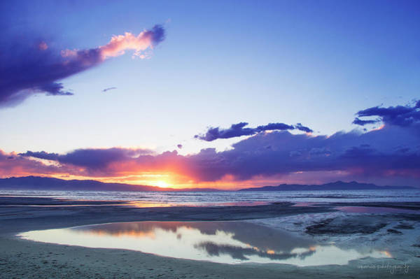Photograph - Beautiful Sunset by William Arenas