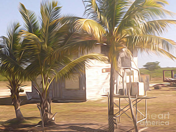 Belize Digital Art - Belize - Two Story Wooden House Obscured By Three Palm Trees  by Jason Freedman