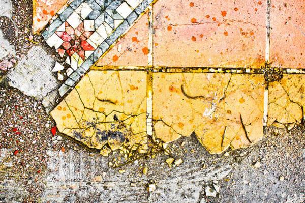 Maintenance Photograph - Broken Tiles by Tom Gowanlock