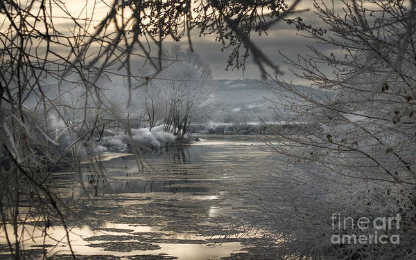 Wall Art - Photograph - by the frozen river Wye by Angel Ciesniarska