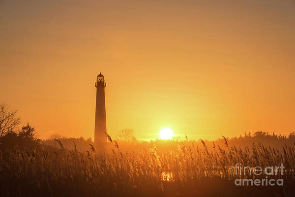 Cape May Lighthouse Photograph - Cape May Lighthouse Sunset by Michael Ver Sprill