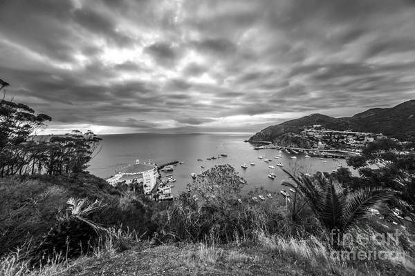 Wall Art - Photograph - Catalina Island Avalon Bay Black And White Picture by Paul Velgos