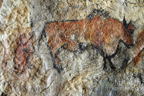 Wall Art - Photograph - Cave Painting In Prehistoric Style by Michal Boubin