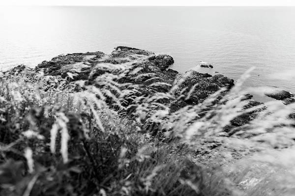 Cliffs At Kullaberg Art Print