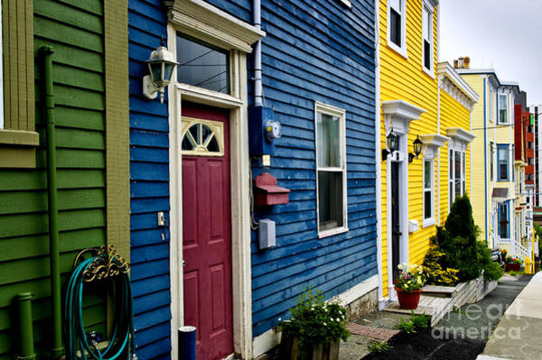 Wall Art - Photograph - Colorful Houses In St. John's by Elena Elisseeva