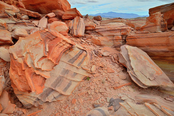 Photograph - Colorful Valley Of Fire State Park by Ray Mathis