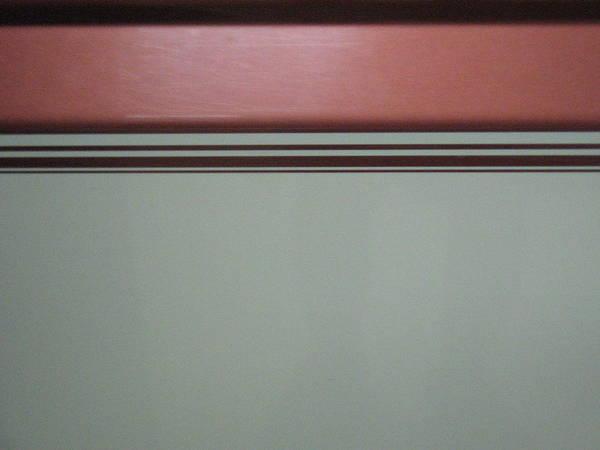 Wall Art - Photograph - Contrast by Blake Pereira