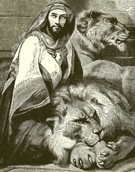 Condemned Wall Art - Painting - Daniel In The Lions Den by English School