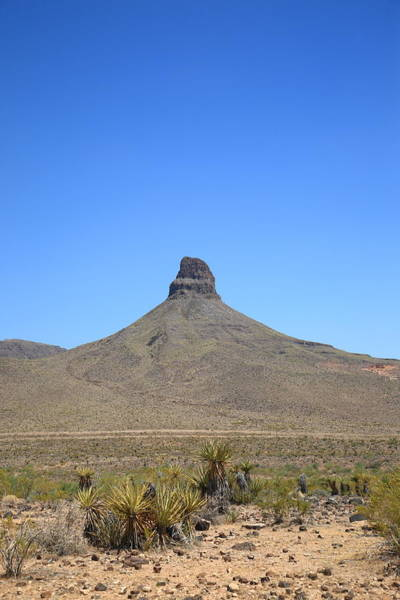 Photograph - Desert Landscape by Frank Romeo