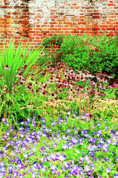 Wall Art - Photograph - English Country Garden by Tom Gowanlock