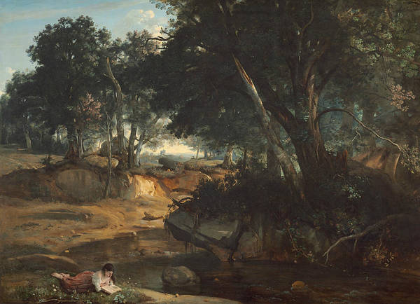 Painting - Forest Of Fontainebleau  by Jean-Baptiste-Camille Corot