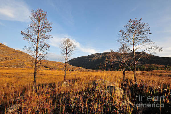 Glen Wall Art - Photograph - Glen Torridon by Smart Aviation