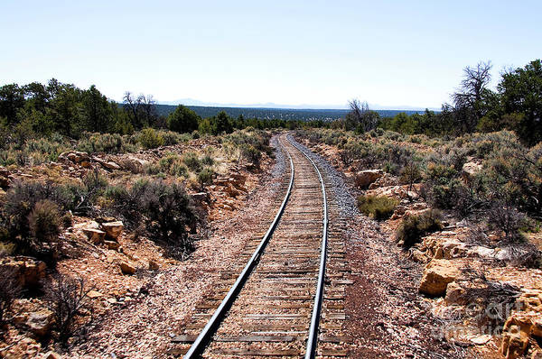 Photograph - Grand Canyon Railway by Thomas R Fletcher