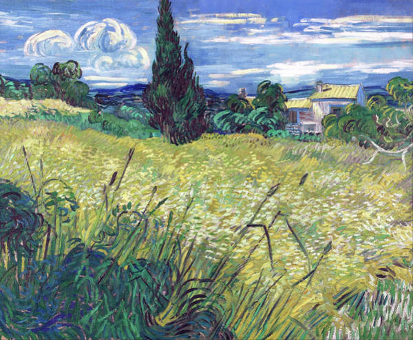 Painting - Green Field by Vincent van Gogh
