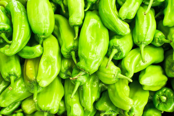 Asian Food Photograph - Green Jalapeno Peppers by Tom Gowanlock