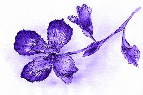 Single Leaf Mixed Media - Hand Drawn Ink Pen Iris On Colorful Textured Watercolor Backgrou by Victoria Yurkova
