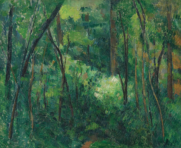 Cezanne Wall Art - Painting - Interior Of A Forest  by Paul Cezanne