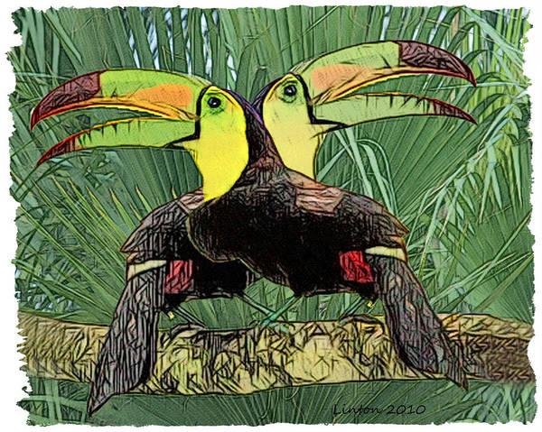 Belize Digital Art - Keel-billed Toucans by Larry Linton