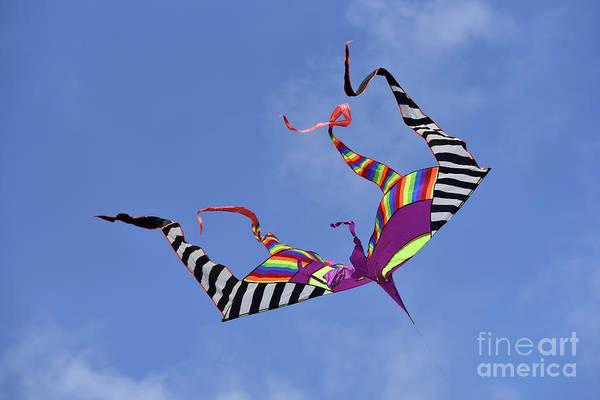 Kite Festival Wall Art - Photograph - Kite Flying During Kite Festival by George Atsametakis