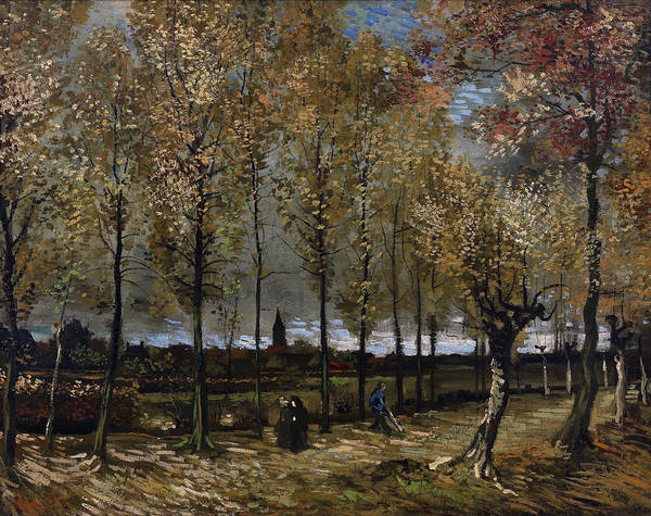 Painting - Lane With Poplars Near Nuenen by Vincent van Gogh