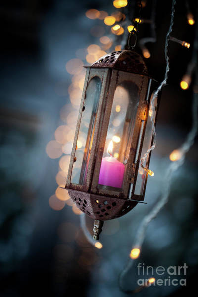 Wall Art - Photograph - Lantern by Kati Finell