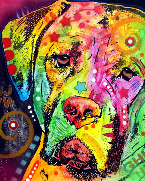 Wall Art - Painting - Mastiff by Dean Russo Art