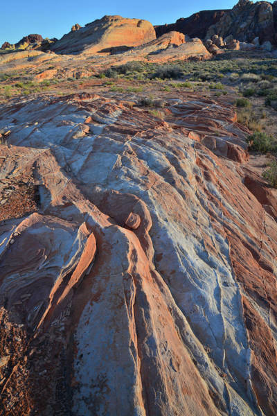 Photograph - Multicolored Sandstone Of Valley Of Fire by Ray Mathis
