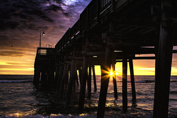 Photograph - Sunburst by Pete Federico