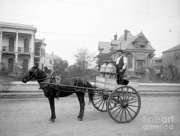 Photograph - New Orleans, Milk Cart.  by Granger