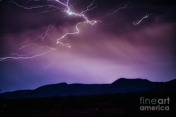 Photograph - Night Lightning by Mark Jackson