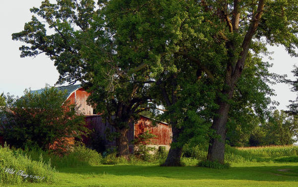 Photograph - 3 Oaks Barn by Wild Thing