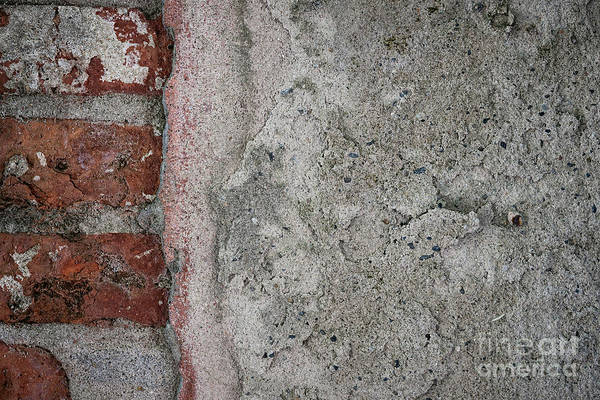 Cement Wall Art - Photograph - Old Wall Fragment by Elena Elisseeva