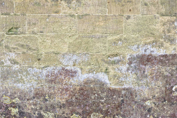Wall Art - Photograph - Old Wall by Tom Gowanlock