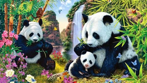 Sports Digital Art - Panda by Super Lovely