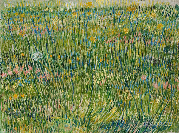 Wall Art - Painting - Patch Of Grass by Vincent Van Gogh