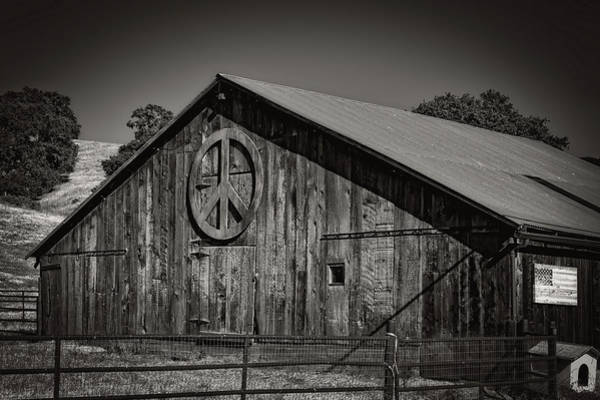 Feedlot Photograph - Peace by Mountain Dreams